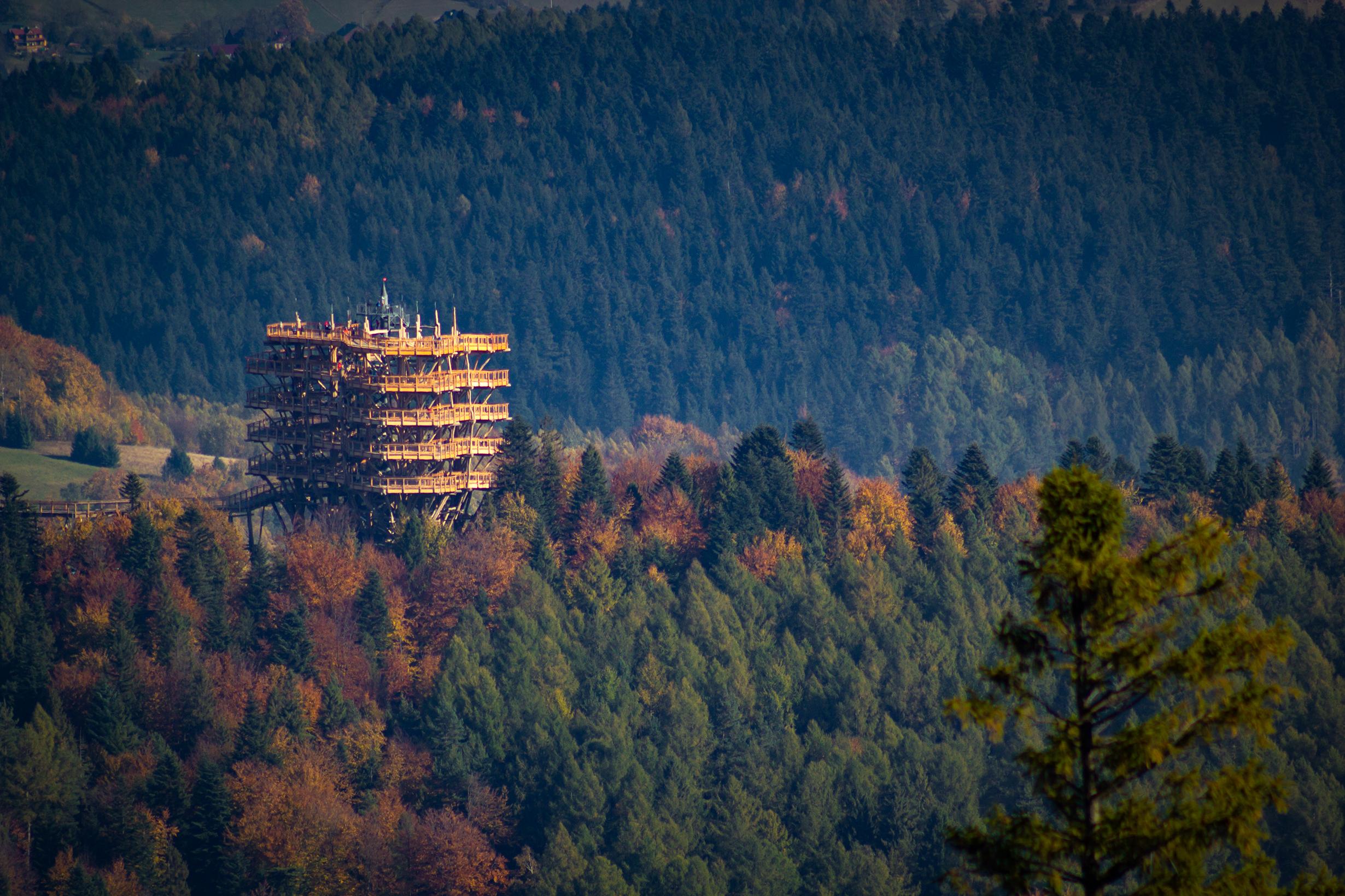 Noclegi Krynica Zdrój z widokiem na oryginalną wieżę widokową